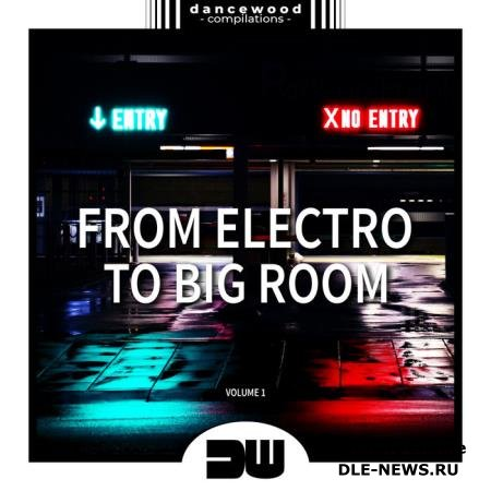 From Electro To Big Room, Vol. 1 (2019)